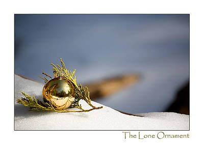 Photograph - The Lone Ornament - 4th Edition by Peter Tellone