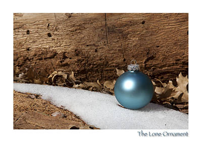 Photograph - The Lone Ornament 8th Edition by Peter Tellone
