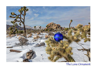 Photograph - The Lone Ornament #9 by Peter Tellone