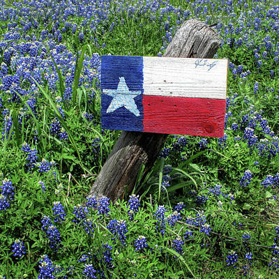 Photograph - The Lone Star Flag And Bluebonnets by David and Carol Kelly