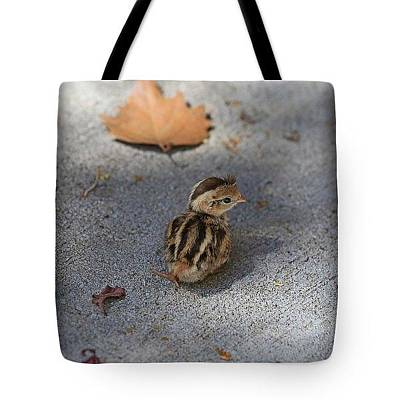 Photograph - The Lone Survivor-tote by Donna Kennedy