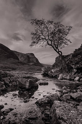 The Lone Tree Of Glencoe Art Print by Ben Spencer