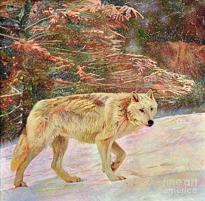 Painting - The Lone Wolf by Kelly McNeil