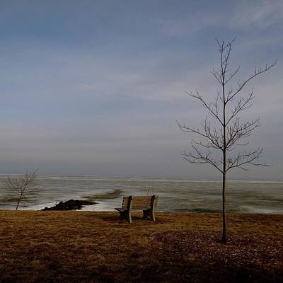 Photograph - The Lonely Bench by Jenny Regan