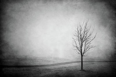 Photograph - The Lonely Path by Yvette Van Teeffelen