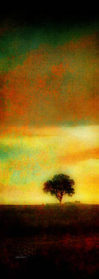 Photograph - The Lonely Tree by Ann Powell