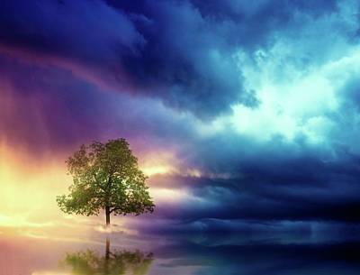 Digital Art - The Lonely Tree by Lilia D