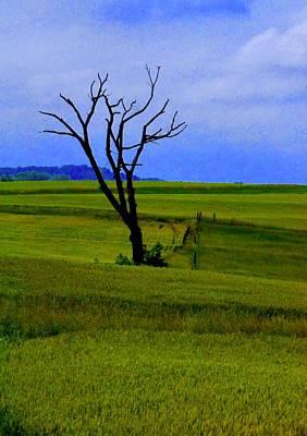 Walter Gantt Wall Art - Photograph - The Lonely Tree by Walter Gantt