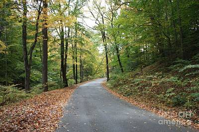 Photograph - The Long And Winding Autumn Road by John Telfer