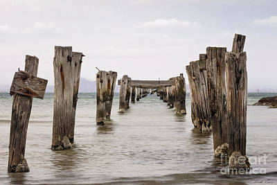Photograph - The Long Jetty by Linda Lees