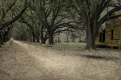 Evergreen Plantation Digital Art - The Long Road by Mitch Spence