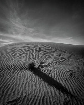 Photograph - The Long Shadow by Peter Tellone