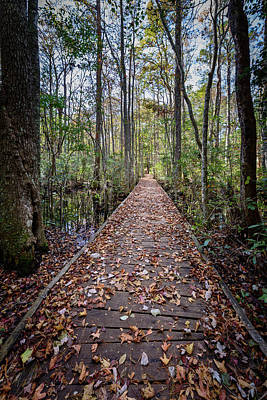 Photograph - The Long Trail by Michael Scott