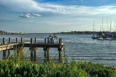 Photograph - The Long View by Diana Mary Sharpton