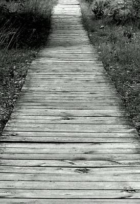 Photograph - The Long Walk by Wild Thing