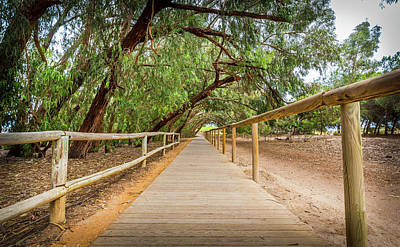 Photograph - The Long Walkway. by Gary Gillette