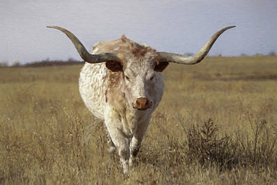 Digital Art - The Longhorn Da3 by Ernie Echols