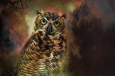 Photograph - The Look In Her Eyes Owl Art by Jai Johnson