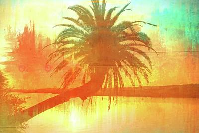 Photograph - The Loop Palm Textured by Alice Gipson