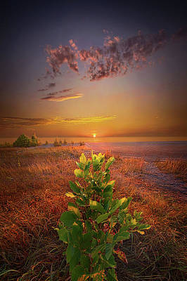 Photograph - The Lord Bless You And Keep You by Phil Koch