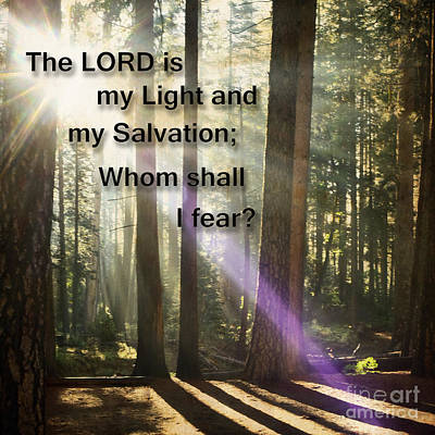 Photograph - The Lord Is My Light by MaryJane Armstrong
