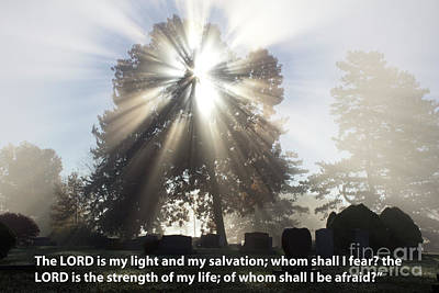 The Lord Is My Light Art Print