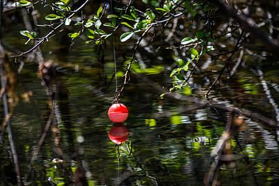 Photograph - The Lost Bobber by Debra Martz