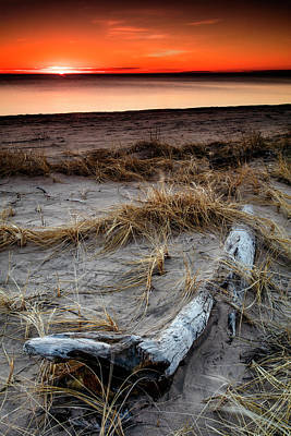 Photograph - The Lost Log by CA Johnson