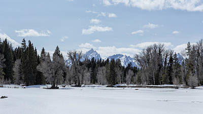 Photograph - The Loveliness Of The Grand Tetons by Belinda Greb