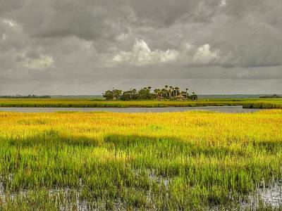 Photograph - The Lovely Low Country by Patricia Greer