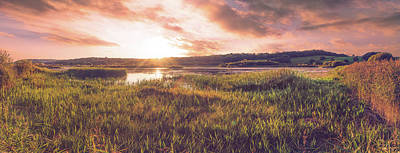 Leighton Moss Wall Art - Photograph - The Low Hide by George Pearson