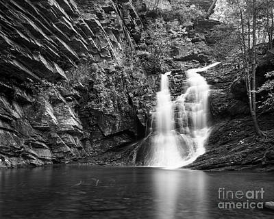 Photograph - The Lower Cascade by Patrick M Lynch