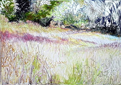 Pointillist Drawing - The Lower Field by Bonnie See