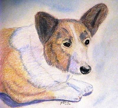 Herding Dog Drawing - The Loyal Corgi by Angela Davies
