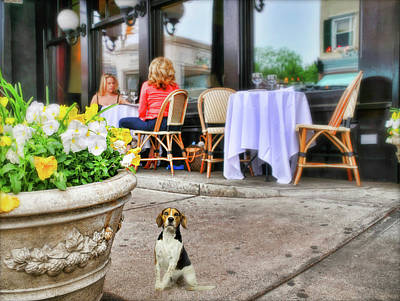 Dog In Landscape Photograph - The Lunch Bunch by Diana Angstadt