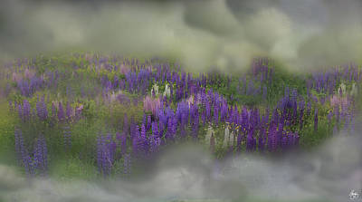 Photograph - The Lupine Cloud by Wayne King