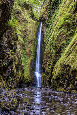 Photograph - The Lush And Green Lower Oneonta Falls by Pierre Leclerc Photography