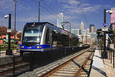 Charlotte Photograph - The Lynx Line In Charlotte by Jill Lang