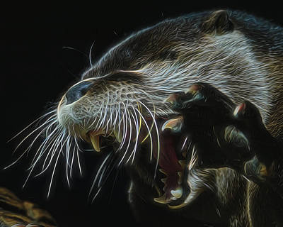 Otter Digital Art - The Mad Otter by Ernie Echols