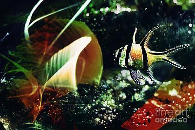 The Magic Fish Art Print by Elena Lir-Rachkovskaya