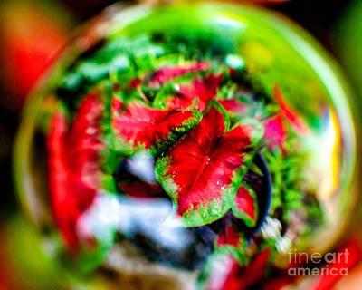Photograph - The Magic Globe  by Ken Frischkorn