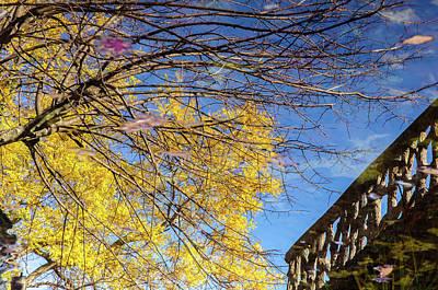 Photograph - The Magic Of Autumn - 3 by Andrea Mazzocchetti