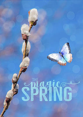 Photograph - The Magic Of Spring by Cathy Kovarik