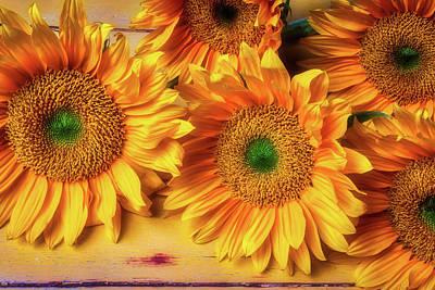 The Magic Of Sunflowers Art Print