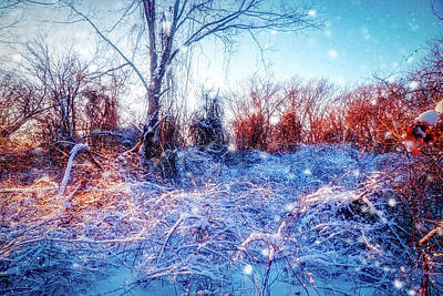 Mixed Media - The Magic Of Winter 2 by Lilia D