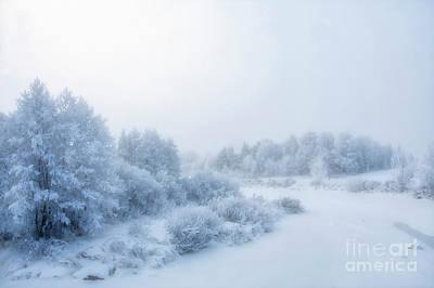 Hoarfrost Wall Art - Photograph - The Magic Of Winter 2 by Veikko Suikkanen