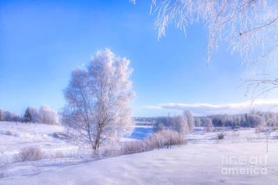 Hoarfrost Wall Art - Photograph - The Magic Of Winter 3 by Veikko Suikkanen