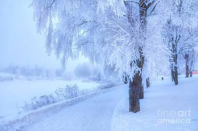 The Magic Of Winter 4 Art Print