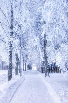 Hoarfrost Wall Art - Photograph - The Magic Of Winter 6 by Veikko Suikkanen