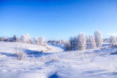 Hoarfrost Wall Art - Photograph - The Magic Of Winter by Veikko Suikkanen